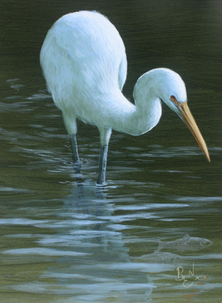Water Study - Egret and Bait